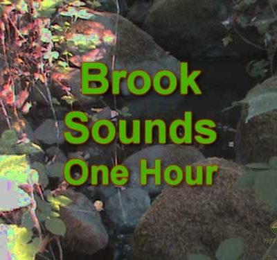 Brook-Sounds-1-Hour