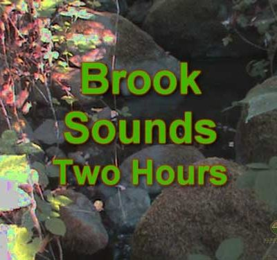 Brook-Sounds-2-Hours