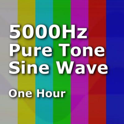 Pure Sine Wave 5000Hz