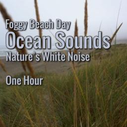 Beach Waves Sound Ambient