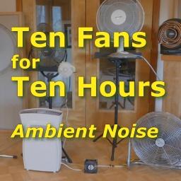 10 Fans Ambient Noise
